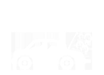 bilvård